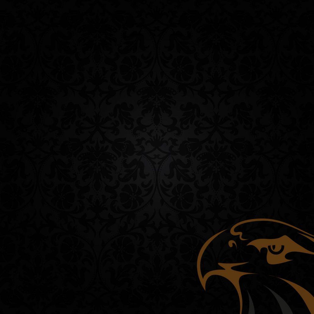 Hintergrund Homepage Adler